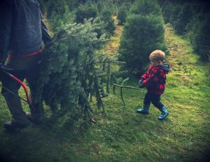 tree-helper